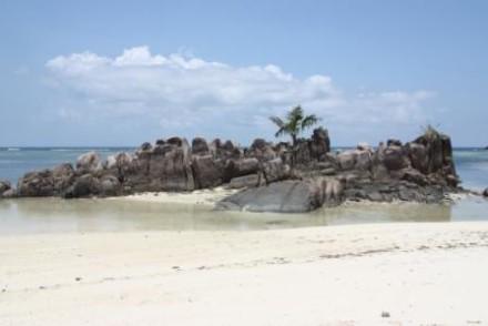 voyage-sejour-seychelles-denis-island