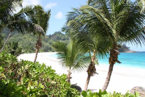 Circuit aux Seychelles hôtel Banyan Tree vue sur océan Indien des vacances organisées par une agence voyage spécialisée routedesseychelles.com