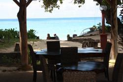 Vacances aux Seychelles hébergement guesthouse Augerine à Mahé par une agence voyage spécialisée routedesseychelles.com